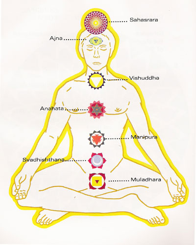 Different Types Of Yoga Are Used For Parts The Body And Mind